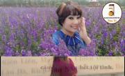 Video nhạc Diệu Pháp Liên Hoa- Xuân Hoa online