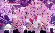 Tải nhạc Mp4 See You Again (Produce 48 Ep 10 Live) mới online