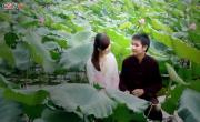 Tải video nhạc Tình Lúa Duyên Trăng hot
