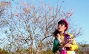 Tải nhạc hot Lúng La Lúng Liếng Xuân hay online
